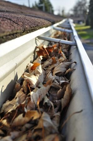 Top Spring Cleaning Tips For Your Gutters And Downspouts