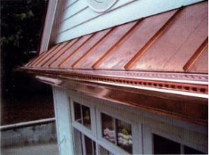 Guard Your Gutters With a LeafTech Gutter Protection System